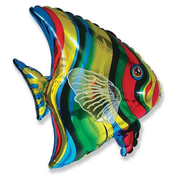 Шар (66 см) Фигура, Тропическая рыба.